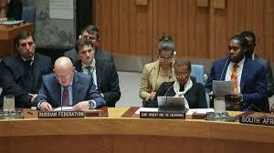 مندوب روسيا لدى الأمم المتحدة: الليبيون فقط هم من يجب أن يتخذ القرار بشأن بلادهم