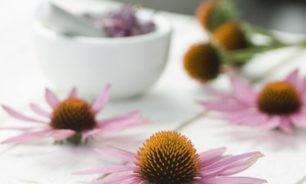 4 أعشاب قد تساعد في تقوية جهاز المناعة بشكل طبيعي