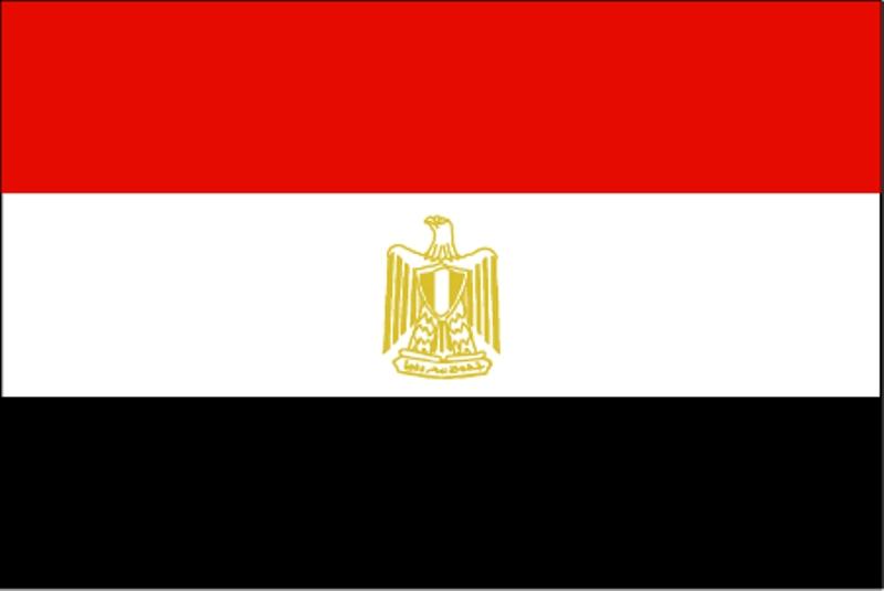 """قتيل و3 جرحى جراء تفجير تبناه """"داعش"""" في سيناء"""