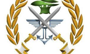 الجيش: ضبط كمية من مادتي المازوت والبنزين